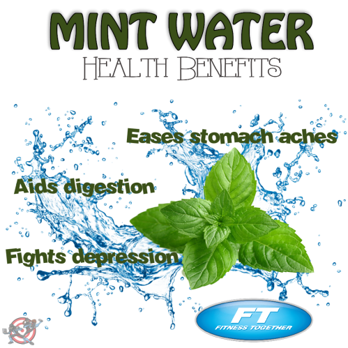 water mint health cience facts